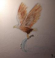 L'aigle pêcheur.