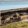 Photographie sur bois. Delplanque Loïc