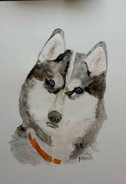 Aquarelle chien husky. Yokozaza
