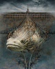 Paris Big Fish.