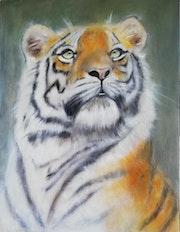 Théo le tigre. Dany d'alife
