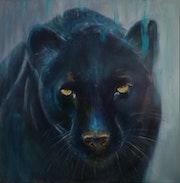 Panthère noire. Dany d'alife