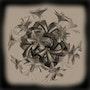 Boule de fleurs sépia. Mireille Laborie