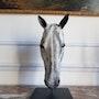 Tête de cheval. Benedicte Montier