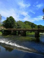 Paisaje de rio. M. Pilar
