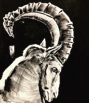 Horns. Taj Mattingly