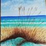 Plage de Floride avec ses dunes et son avoine de mer, sa mer turquoise,. Salsera