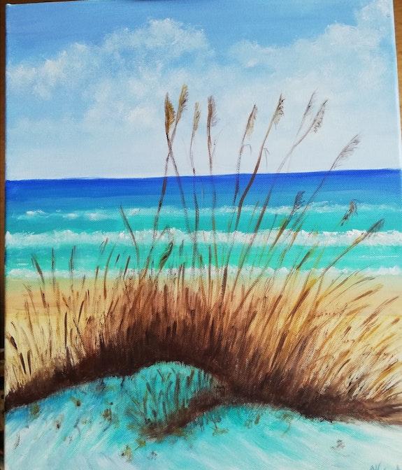Plage de Floride avec ses dunes et son avoine de mer, sa mer turquoise,. Salsera Salsera