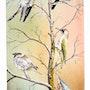 Oiseaux de nos jardins.