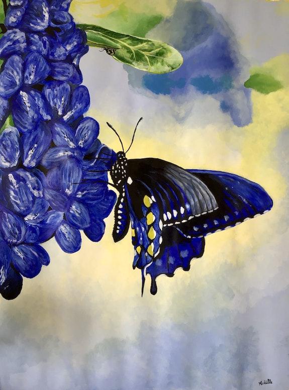 Le papillon bleu. Achille Achille