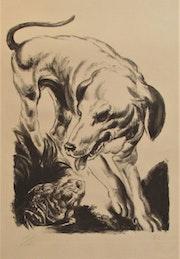 Edy-Legrand (1892-1970). Chien & crapaud.. Historien d'art, Archéologue; Chercheur Free-L.