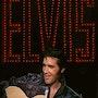 Dessin Hommage à Elvis Presley. P Fort