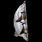 Trinity Humpback Whale Sculpture by Dan Medina. Esculpture