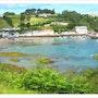 Green Bay. David Lacey