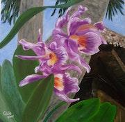 Les orchidees mauves.