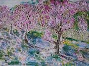 Sakura. Toshio Asaki
