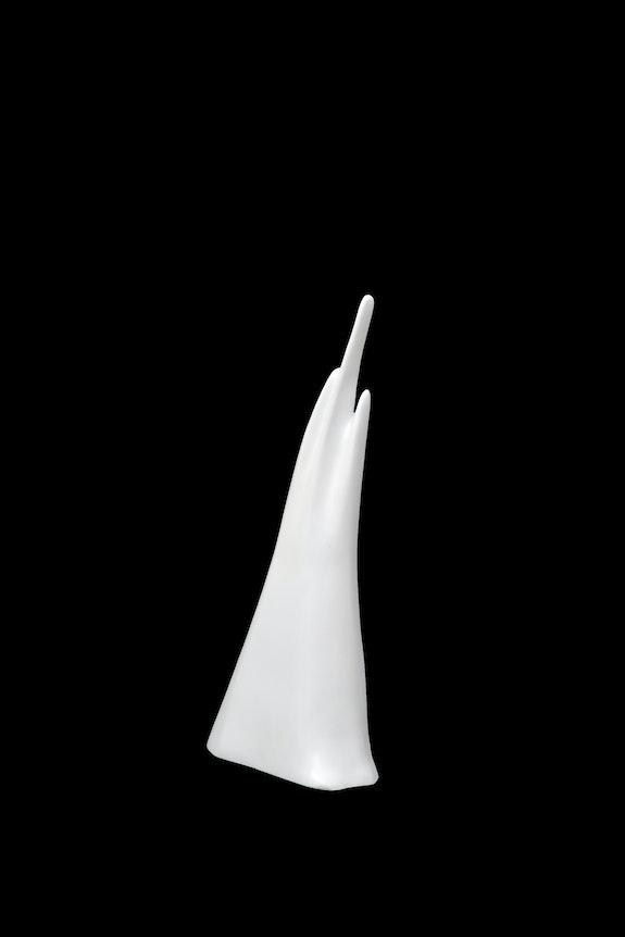 Untitled 008. Golnar Ghasimi Biafarin
