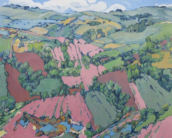 'Color Fields'. George Brinner