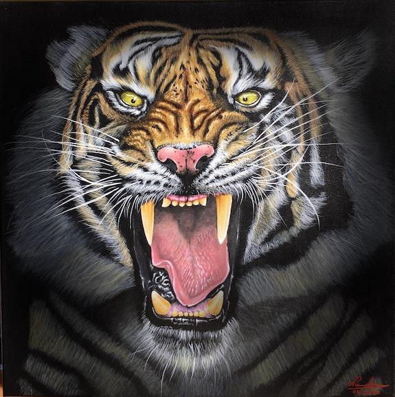 Tiger whisper. Nicolae Doru Andrei Nicolae Doru-Andrei