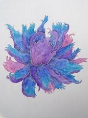 Fleur. Anaïs Maria