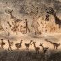 Arte prehistorico. Carlos Pallares