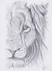 Lion. Faryal Choudry