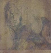 Lion. Galeria Arte En Linea