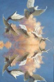 Survol de nuages. Marie Carteron
