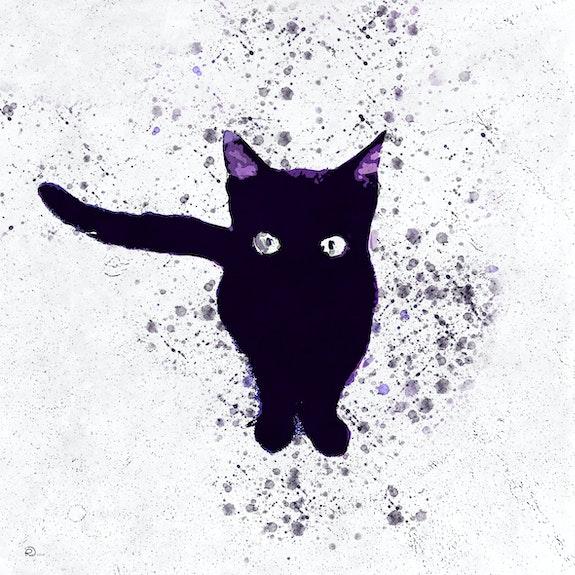 Gato Negro. Reinaldo Duarte Reinaldo Duarte