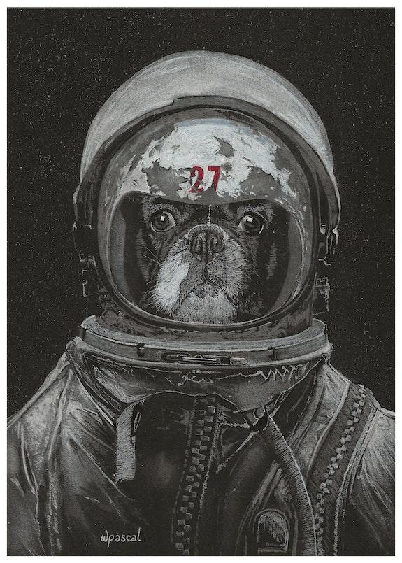 Space Frenchie. Wpascal Wpascal