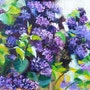 Blooming Lilac Branches. Kselma