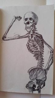 Squelette. Faryal Choudry