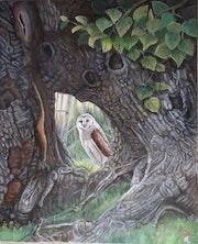 Surprise dans la forêt.
