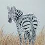 Zebre. Yves Briais