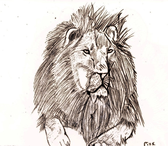 Lion. Pize Pizou