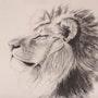 Lion. Tiffanie Daubié