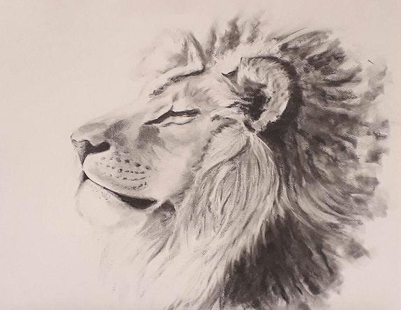 Lion. Tiffanie Daubié Tiffanie Daubié