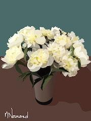 Pivoines blanches.