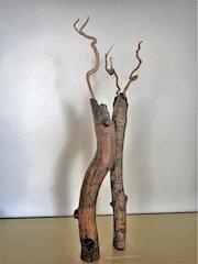 Duo de Bois de poète: Coup de foudre.
