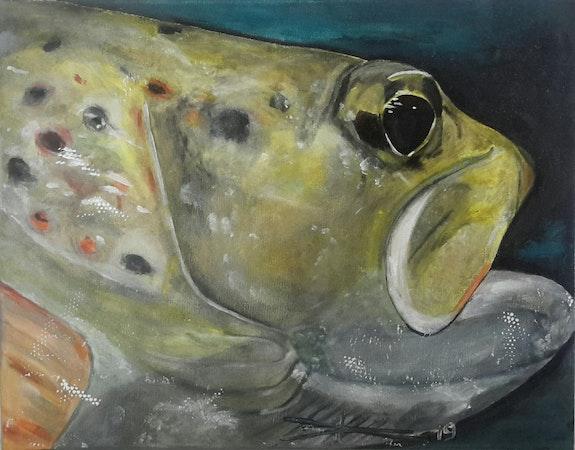 Brown trout. Arlette Sanz -Dutheil Arlette Sanz Dutheil