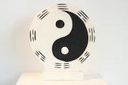 Disque Yin Yang.
