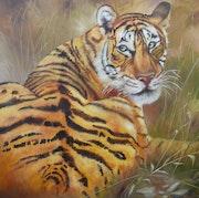 Tiger. Rosário Falcão