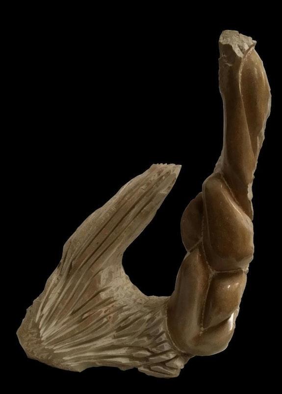 Aqua. Karl Lefebvre Karl Artiste Sculpteur