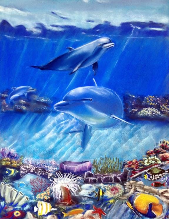 Les dauphins. M-J M M-j m
