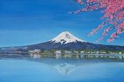 Mont Fuji. Nadège Lehain