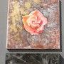 Série «Roses». Isabelle Le Pors