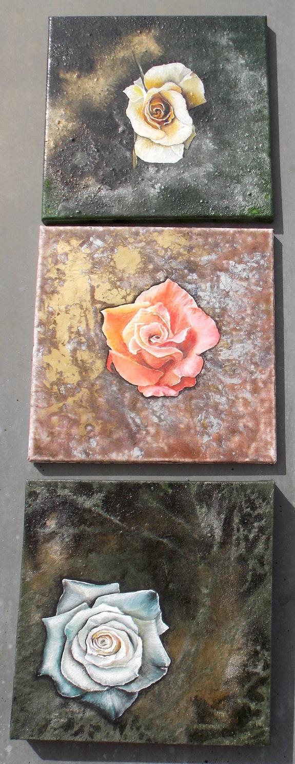 Série «Roses». Isabelle Le Pors Isabelle Le Pors