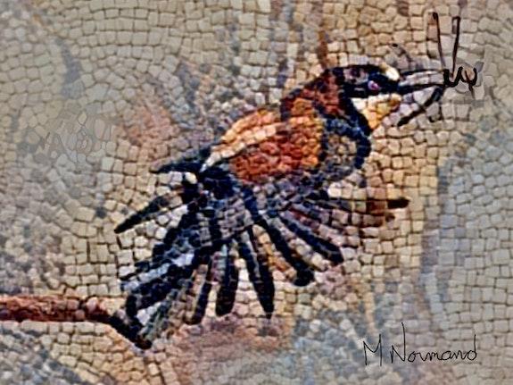 2019-08-28 Mosaïque guépier d'Europe mangeant une libellule. Michel Normand Michel Normand