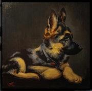 Portrait animaux (30x30).
