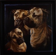 Portrait animaux (40x40).